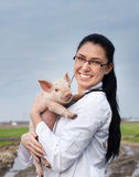 Veterinarian girl with piglet Royalty Free Stock Photography