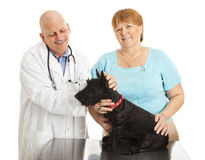 Veterinarian and Happy Dog Owner Royalty Free Stock Photography