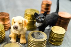 Costs of a pet. Veterinarian, health insurance, pet doctor, fodder we have to pay much Money for our fond of animals Royalty Free Stock Photography