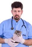 Veterinarian holding a kitten Stock Photo