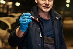 A veterinarian holding a test-tube with red liquid on a cow farm indoors. Veterinarian holding a test-tube with red liquid on a cow farm indoors stock image