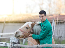Veterinarian with horse Royalty Free Stock Image