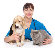 Veterinarian hugging cat and dog.  on white background Royalty Free Stock Photos