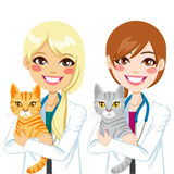 Veterinarian hugging Cat Royalty Free Stock Image