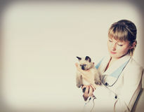Veterinarian and kitten. In retro style royalty free stock photos