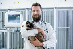 Veterinarian pet doctor holding cat patient in his animal clinic Royalty Free Stock Photography