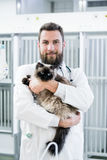 Veterinarian pet doctor holding cat patient in his animal clinic Stock Photography