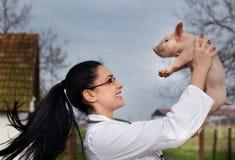 Veterinarian raising piglet in the air Royalty Free Stock Photos