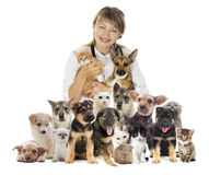Veterinarian and set of pets. Cat and dog Royalty Free Stock Photo