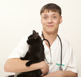 Veterinarian surgeon doctor and cat Stock Image