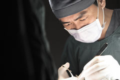 Veterinarian surgery in operation room Royalty Free Stock Image