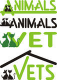 Veterinario, animales - gato y perro Fotografía de archivo