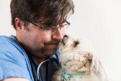 Veterinario Caring para el perro Fotografía de archivo