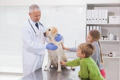 Veterinario che esamina un cane con i suoi proprietari Immagini Stock Libere da Diritti