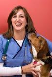 Veterinario con un beagle Foto de archivo libre de regalías