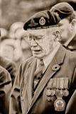 Veterinario de la guerra del día de la conmemoración Fotografía de archivo