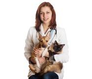 Veterinario de la mujer con los animales domésticos Fotografía de archivo libre de regalías