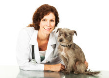 Veterinario de sexo femenino amistoso With Small Dog Fotos de archivo