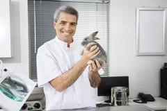 Veterinario de sexo masculino maduro confiado que sostiene el conejo lindo Fotos de archivo