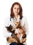 Veterinario della donna con gli animali domestici Fotografia Stock