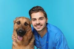 Veterinario doc. con el perro imagen de archivo libre de regalías