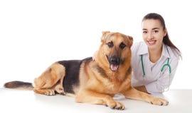 Veterinario doc. con el perro en blanco fotos de archivo