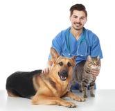 Veterinario doc. con el perro y el gato fotos de archivo