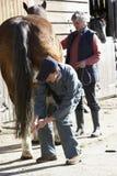 Veterinario en la discusión con el propietario del caballo Fotografía de archivo