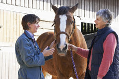 Veterinario en la discusión con el propietario del caballo Fotografía de archivo libre de regalías