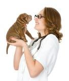Veterinario femminile che esamina un cucciolo di cane di sharpei Fotografia Stock