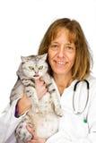 Veterinario femminile che tiene un gatto Immagini Stock
