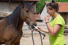 Veterinario joven y un caballo Foto de archivo libre de regalías