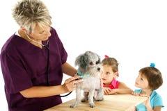 Veterinario, perro y niños Fotos de archivo libres de regalías