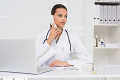Veterinario que llama por teléfono y que usa al ordenador portátil Fotos de archivo libres de regalías