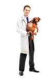 Veterinario sonriente que sostiene un perrito Foto de archivo libre de regalías