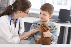Veterinario y cabrito que discuten el tratamiento del conejo Imagen de archivo