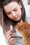 Veterinario y gato Imagenes de archivo
