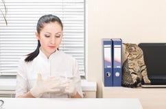 Veterinario y gato Imagen de archivo libre de regalías