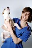 Veterinario y perro Foto de archivo libre de regalías