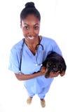 Veterinario y perro Fotografía de archivo libre de regalías