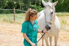 Veterinary на ферме Стоковое Фото