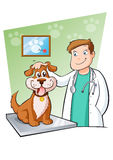 Veterinary. Vector  illustration of a veterinarian that takes care  of a dog Stock Image