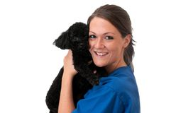 Veterinary Assistant Holding Pet Dog Isolated. Veterinary assistant holding pet poodle isolated on white background Royalty Free Stock Photos