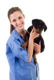 Veterinary Stock Image