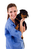 Veterinary Royalty Free Stock Image