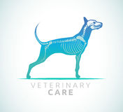 Veterinary care - dog care Stock Photo