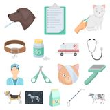 Veterinary clinic cartoon icons in set collection for design. Treatment of a pet vector symbol stock web illustration. Veterinary clinic cartoon icons in set Royalty Free Stock Image