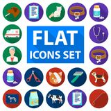 Veterinary clinic flat icons in set collection for design. Treatment of a pet vector symbol stock web illustration. Veterinary clinic flat icons in set Royalty Free Stock Photography
