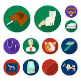 Veterinary clinic flat icons in set collection for design. Treatment of a pet vector symbol stock web illustration. Veterinary clinic flat icons in set Royalty Free Stock Photos