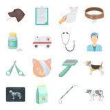 Veterinary clinic set icons in cartoon style. Big collection of veterinary clinic vector symbol stock illustration Stock Photography